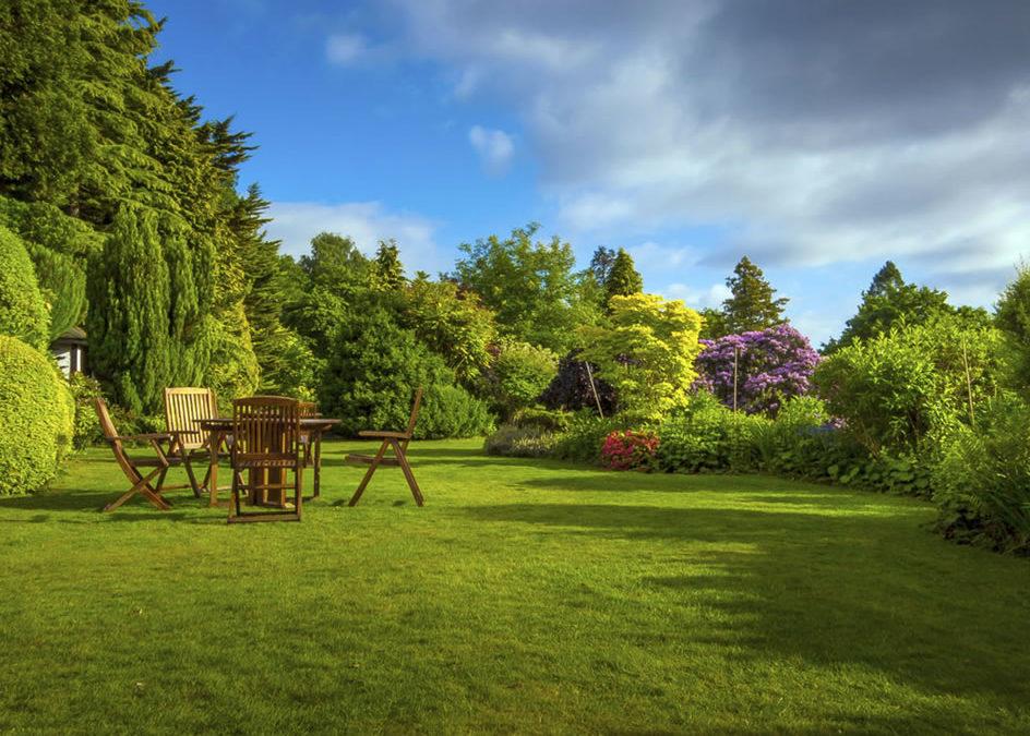 Réduction impôts jardinage