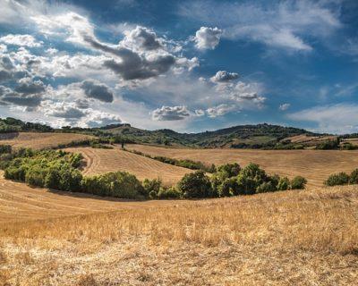 Vendre un terrain à un promoteur : les choses à faire et à ne pas faire si vous voulez vendre des terrains