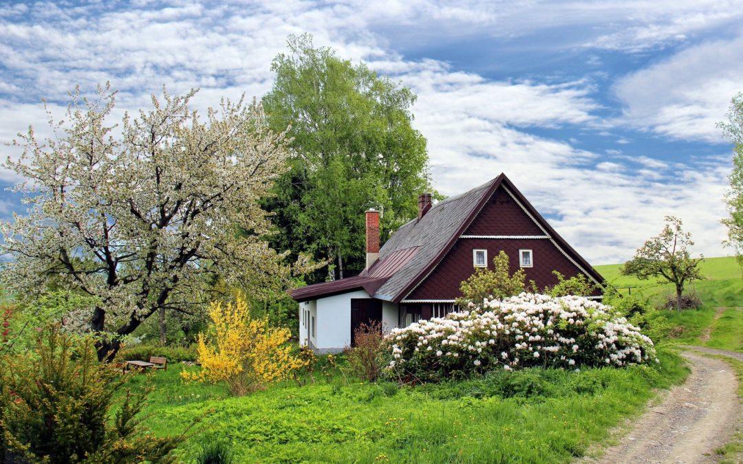 Embellir son jardin avant de vendre sa maison
