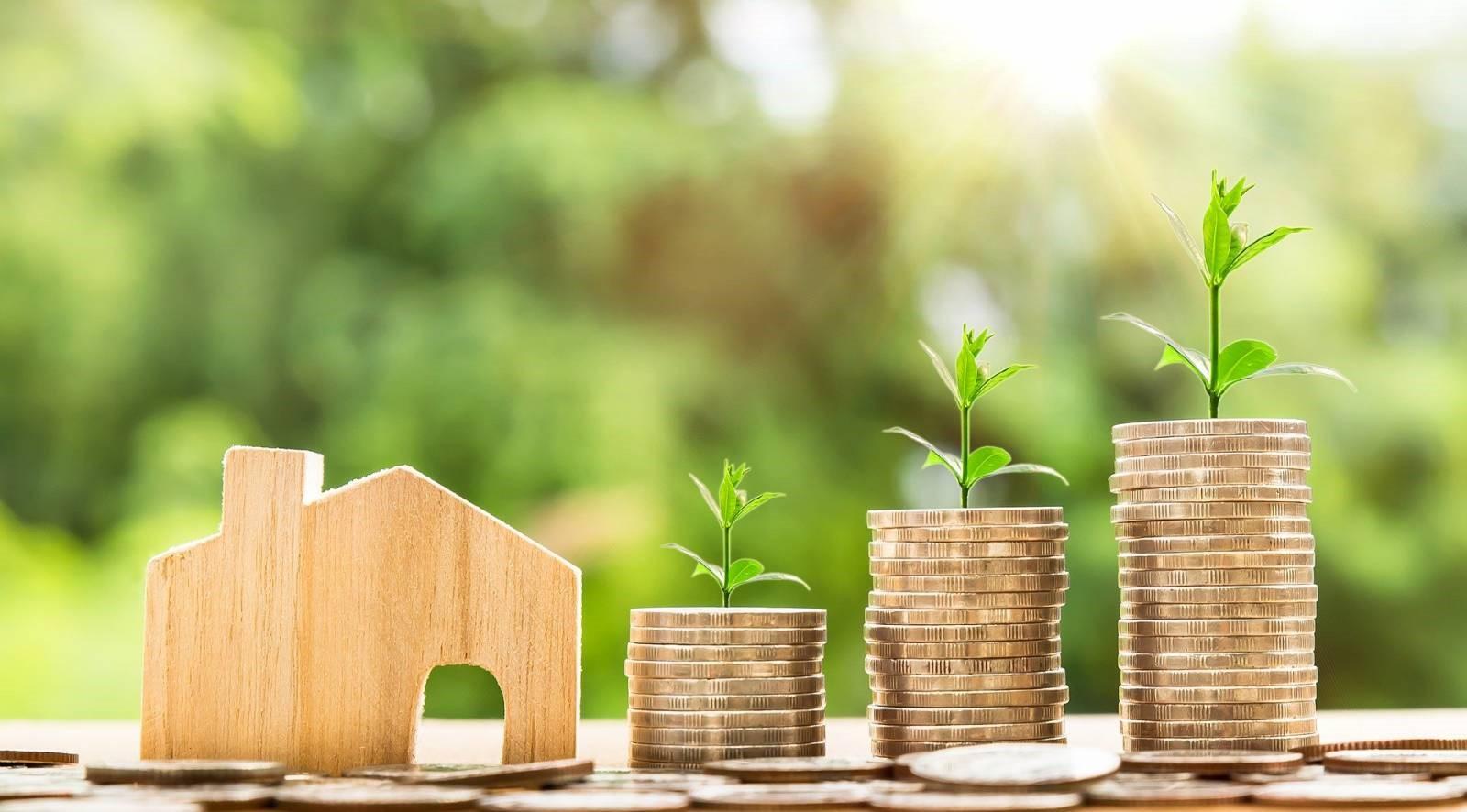 investissement immobilière